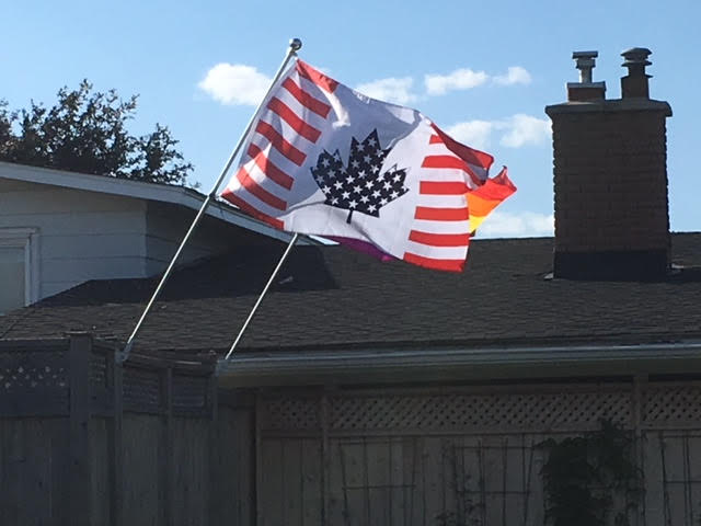 A Canada/America flag: Stripes on the red ends and white stars on a blue maple leaf.