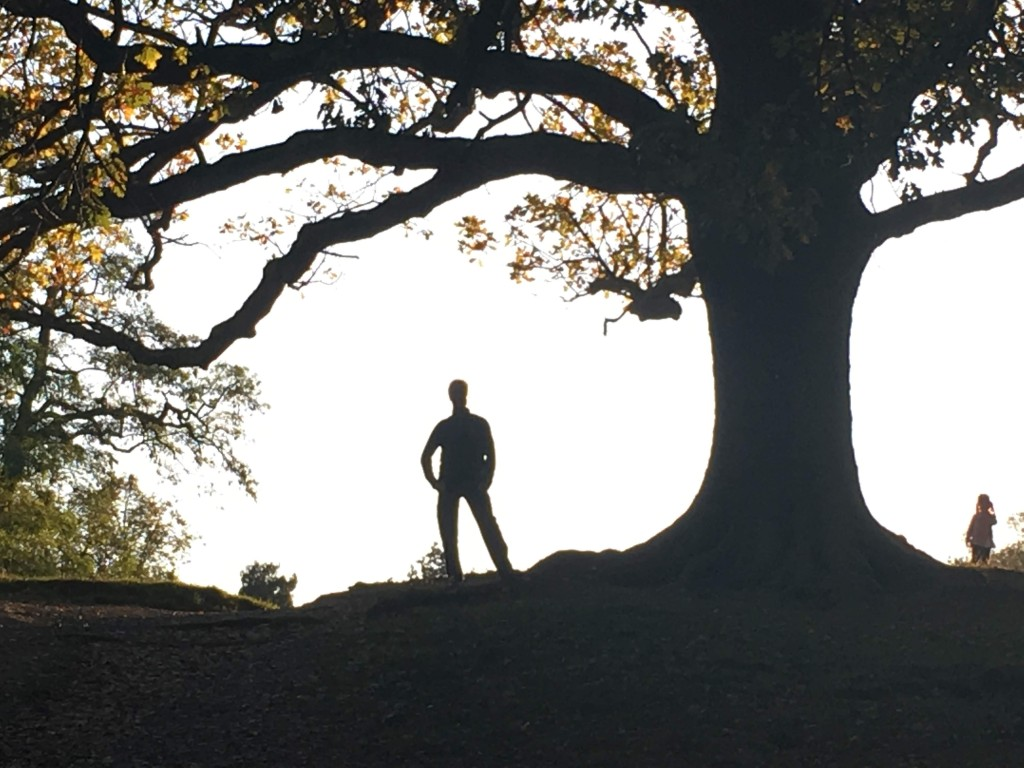 Man and tree silhouette